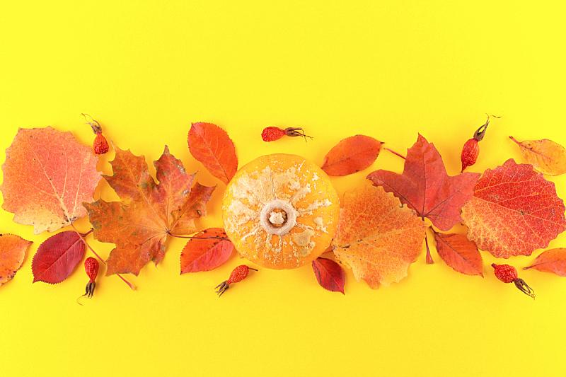 秋天,平铺,创造力,概念,顶部,风景,黄色背景,构图