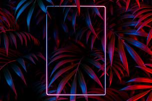 空白的,霓虹灯,垂直画幅,留白,叶子,三维图形,边框,背景,鸡尾酒