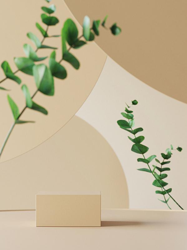 三维图形,圆形,叶子,化妆用品,背景,桉树,商品,几何学,颁奖典礼,褐色