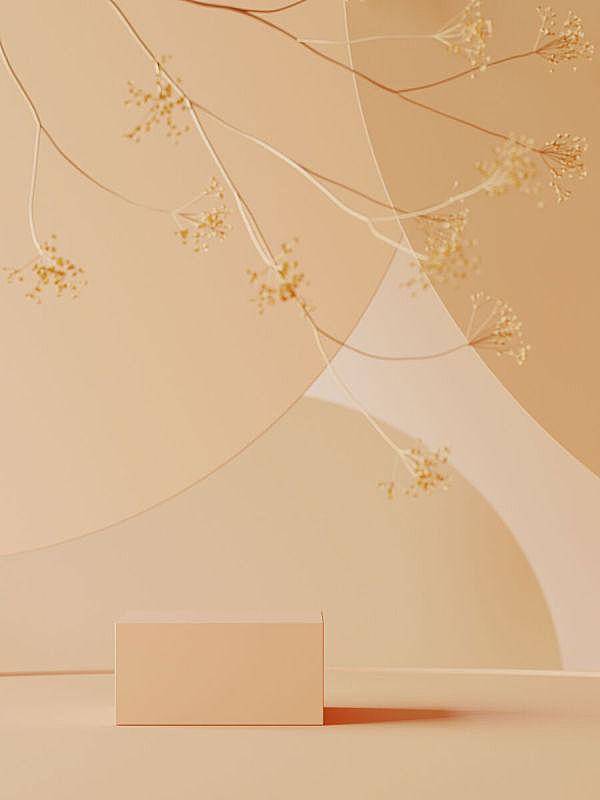 化妆用品,背景,圆形,指挥台,商品,植物,几何学,褐色,黄色,三维图形