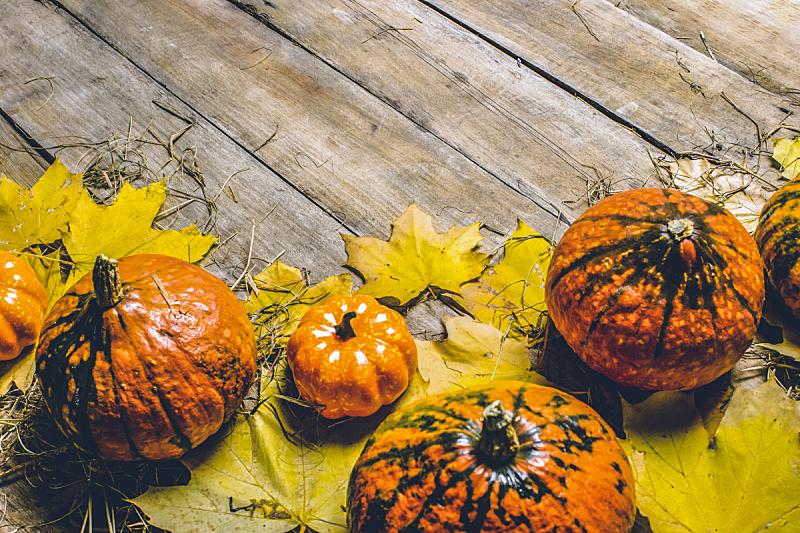 秋天,南瓜,叶子,顶部,概念,农作物,熟的,平铺,木制