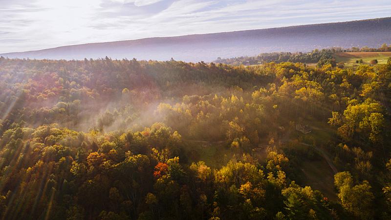 雾,森林,秋天,早晨,航拍视角,美国小镇,山,与众不同