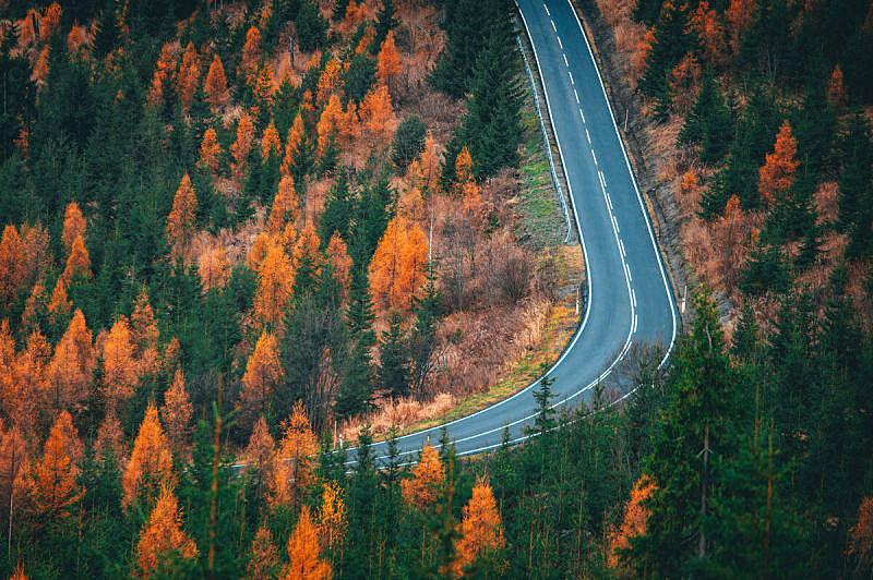自然,秋天,路,森林,概念,空的路,自然美,橙色,摄影,渴望