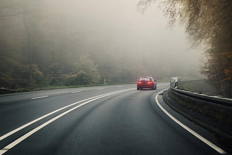 雾,秋天,路,森林,路钉,近视,选择对焦,水平画幅,无人,交通
