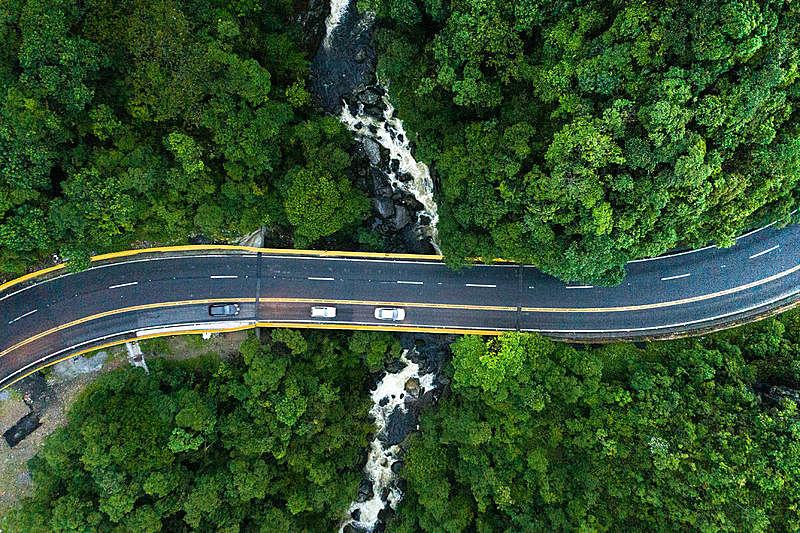 森林,航拍视角,路,正上方视角,高视角,公路,汽车,山,树林,风景