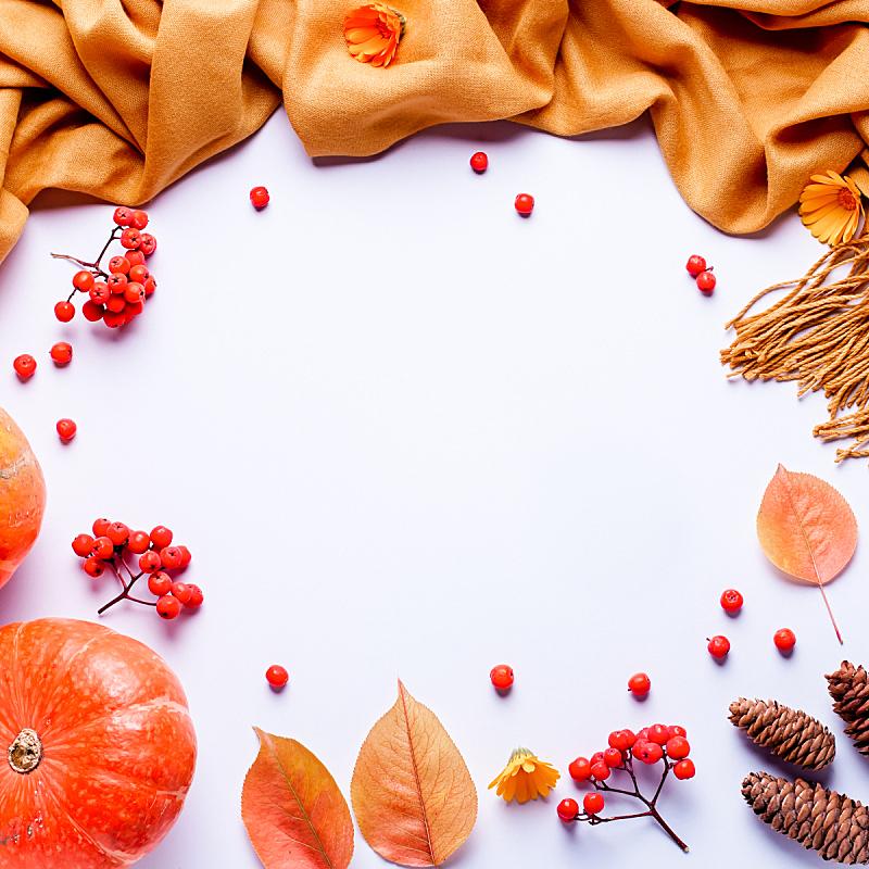 浆果,平铺,黄色,秋天,概念,毯子,叶子,围巾,构图