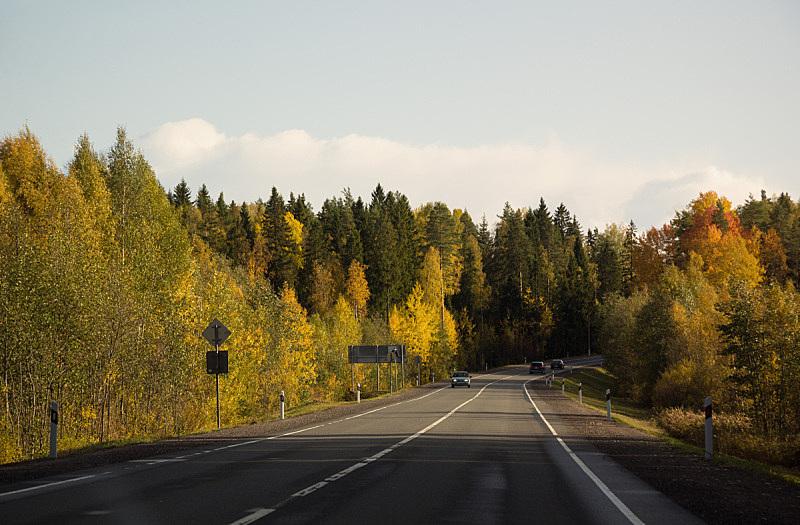 自然美,秋天,路,地形,旅途,云,枝繁叶茂,公路,户外,天空