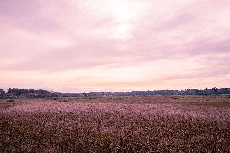 cley next the sea,诺福克,风景,自然,偏远的,图像,美,英国,宁静,自然美