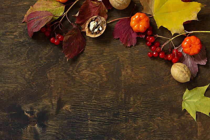 背景,秋天,文字,太空,餐位,自由,平铺,收获,上装