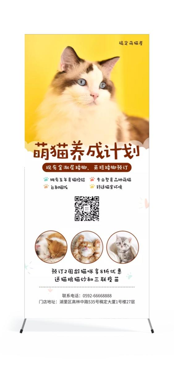宠物/简约可爱/项目介绍/展架