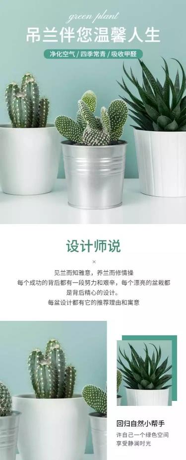 清新简约盆栽详情页
