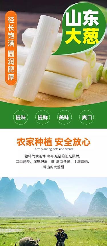 食品生鲜蔬菜大葱详情页