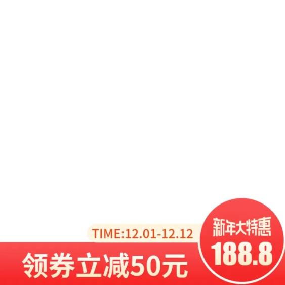 新年/2020/年货节/春节/通用/特惠/红色喜庆主图图标